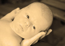 Beautiful and serious newborn baby in sepia Royalty Free Stock Photos