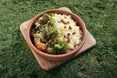 Beautiful Serving Vintage Ceramic Bowl of Roast Meat with Rice and Herbs Close Up. Homemade Grilled Beef, Lamb Fillet with Onions, Raisins, Dried Fruits and stock images