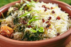 Beautiful Serving Vintage Ceramic Bowl of Roast Meat with Rice and Herbs Close Up. Homemade Grilled Beef, Lamb Fillet with Onions, Raisins, Dried Fruits and stock photos