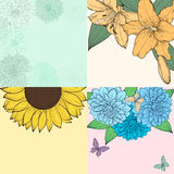 Beautiful set of background with space for text, frame of flowers. Royalty Free Stock Photography