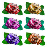 Beautiful set of different roses. hand-drawn illustration.  Stock Photos