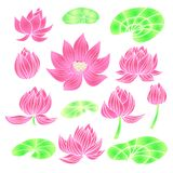 Lotus1. Beautiful set of flower lotus. Cute elements in cartoon style. Isolated. Perfect for site backgrounds, wrapping paper and fabric design. Vector stock illustration