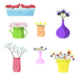 Beautiful set of flowers in colored vases  Stock Images