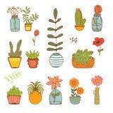 Beautiful set of hand drawn houseplants Stock Images