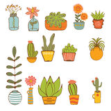 Beautiful set of hand drawn houseplants Stock Photography