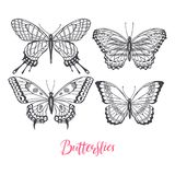 Set of sketch butterflies. Beautiful set of sketch butterflies. hand-drawn illustration Stock Photo