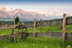 Beautiful setting of flowers, cartwheel and wooden fence. Sunset mountains. Royalty Free Stock Photo