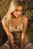 Beautiful sexual girl Stock Photos