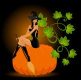 Beautiful sexual witch and pumpkin Royalty Free Stock Images