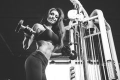 Sexy athletic young girl training arms in gym. Beautiful sexy athletic young caucasian girl working out training arms in the gym gaining weight pumping up Royalty Free Stock Image