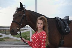 Beautiful and blonde with big breasts in a red dress and a horse of brown suits. A beautiful and blonde with big breasts and a horse of brown suits royalty free stock photo