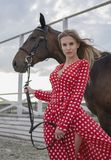 Beautiful and blonde with big breasts in a red dress and a horse of brown suits. A beautiful and blonde with big breasts and a horse of brown suits stock photo