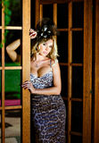 Beautiful blonde with big bust in leopard print dress and a. Hat with feathers is worth about wooden doors stock photos