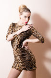 Beautiful sexy blonde woman in brown patchy dress. Posing sensually in studio Stock Images