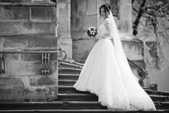 Beautiful sexy brunette bride in white dress walking up stairs,. Baroque church in Lviv background b&w Royalty Free Stock Image