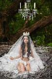 Beautiful and brunette model girl, in lingerie and crown, is sitting in a huge nest in the green forest royalty free stock image