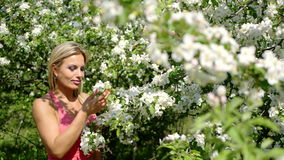 Beautiful girl enjoys the scent of blooming gardens stock video