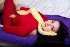 Beautiful sexy girl holding a white albino python. She wears a bright red evening dress. Sexy body, beautiful face, long black hair. sofa with purple veil Stock Photos