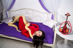 Beautiful sexy girl holding a white albino python. She wears a bright red evening dress. Sexy body, beautiful face, long black hair.  smoking hookah, relax Royalty Free Stock Photo