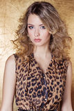 Beautiful sexy girl in leopard dress in bright makeup in the Studio on a gold background Royalty Free Stock Image