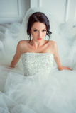 Beautiful sexy girl in a luxurious dress Stock Images