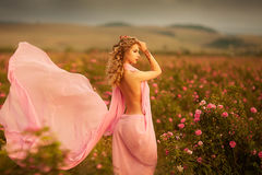 Beautiful girl in a pink dress standing in the garden roses royalty free stock images