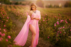 Beautiful girl in a pink dress standing in the garden roses stock photo