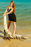 Beautiful sexy girl on seashore Stock Images