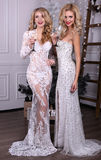 Beautiful sexy girls with blond hair in luxurious dresses,holding glasses of champagne in hands, Stock Image
