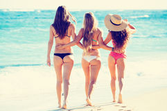 Beautiful Sexy Group of Girls on the Beach Royalty Free Stock Photo