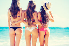 Beautiful Sexy Group of Girls on the Beach Royalty Free Stock Images