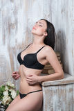 beautiful and sexy lady Stock Images