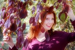 Beautiful lovely young foxy fiery red-haired girl, among violet lilac autumn bush, holding the leaves in both hands. In the park, happy, merry, funny with laugh stock photography