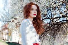Beautiful sexy red-haired girl with freckles with red lipstick on her lips near blooming trees in the city on a sunny clear day Stock Photography
