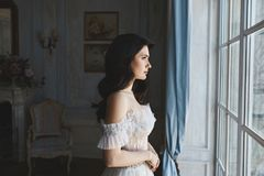 Beautiful, and sensual brunette model girl in stylish lace dress with naked shoulders posing in luxury vintage royalty free stock image