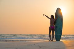 Beautiful sexy surfer girl on the beach stock image