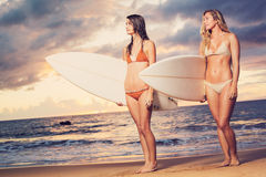Beautiful Sexy Surfer Girls on the Beach. At Sunset Stock Photo