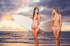 Beautiful Sexy Surfer Girls on the Beach. At Sunset Stock Photography