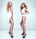 Beautiful sexy twins Stock Photos