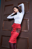 Beautiful sexy woman brunette hair wear skirt sweater Stock Image