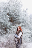 Beautiful sexy woman with a gentle sweet bright red hair walking on a frozen snowy woods Stock Photography