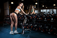 Beautiful sexy woman with perfect buttocks at the gym. Beautiful sexy girl with perfect buttocks muscles at the gym. The concept of a healthy lifestyle and Stock Image