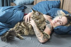 Woman in bed with a cat. Beautiful woman with a tattoo in bed with a big cat royalty free stock photography