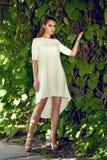Beautiful sexy woman wearing dress walk in the park sun shine Stock Photography