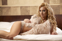 Beautiful and sexy woman wearing elegance fur Stock Photography