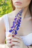 Beautiful sexy woman in white sundress holding lupine flower in the hands Stock Photo