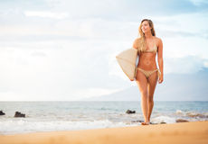 Beautiful sexy young surfer girl in bikini on the beach at sunse Royalty Free Stock Photos