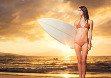 Beautiful sexy young surfer girl in bikini on the beach at sunse Royalty Free Stock Photography