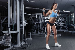 Beautiful sexy young woman in gym. Beautiful sporty sexy woman doing squat workout in gym Royalty Free Stock Photography