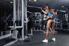 Beautiful sexy young woman in gym. Beautiful sporty sexy woman doing squat workout in gym Royalty Free Stock Photos